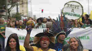 SOS From Brazil's Amazon Fire Protesters: 'We Need The World's Help Right Now'