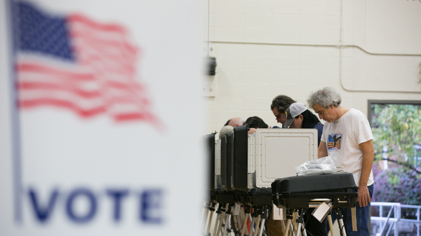 Voters cast their ballots at a polling station set up at Grady High School for the mid-term elections last November in Atlanta, Georgia. Georgia is set to replace all of its voting machines, which cybersecurity experts had deemed insecure, before the 2020 elections.