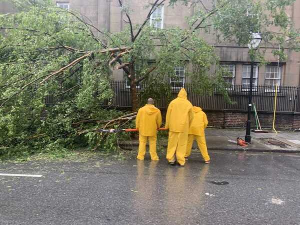 Workers respond to one of more than 100 trees in Charleston, South Carolina damaged by the forceful winds brought by Hurricane Dorian on Thursday.