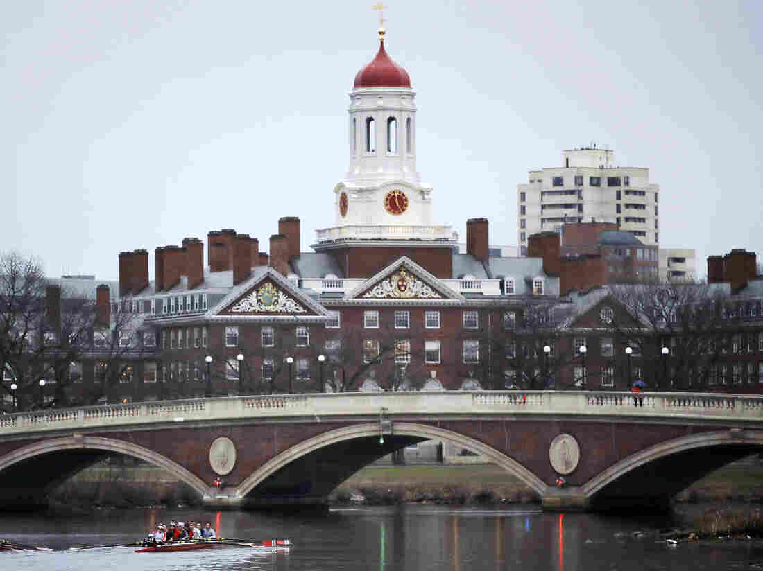 FILE - In this March 7, 2017 file photo, rowers paddle along the Charles River past the Harvard College campus in Cambridge, Mass. (AP Photo/Charles Krupa, File)