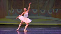 María Fernanda Papa, 16, wanted to continue the dance education she'd begun back home in Venezuela. She's now enrolled at a school run by Arts Ballet Theatre of Florida in North Miami Beach.