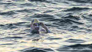 American Becomes 1st Person To Swim English Channel 4 Times Without Stopping