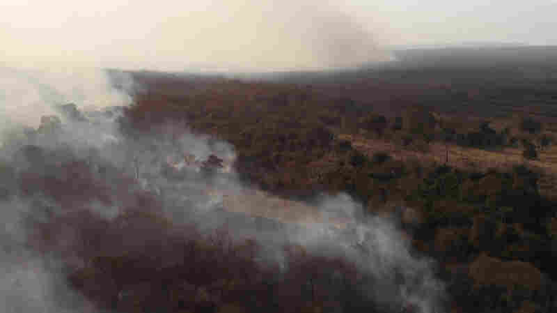 Bolivia Is Fighting Major Forest Fires Nearly As Large As In Brazil
