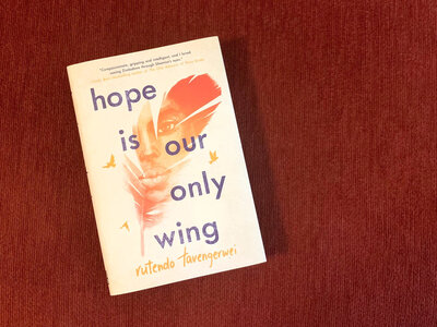 'Hope Is Our Only Wing' Tackles Tough Issues With Straightforward Style