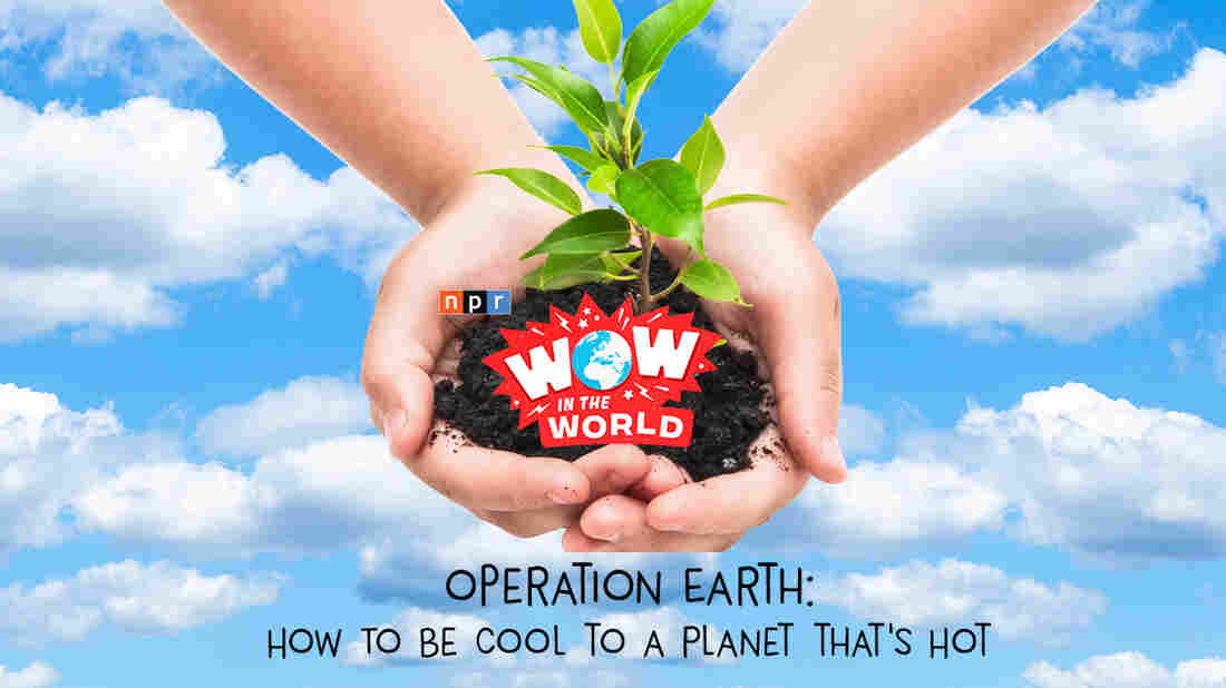We've all heard of Climate Change, but what is it, and why is it bad news for planet Earth?  Join Guy Raz and Mindy Thomas as they go back in time in an effort to protect our future! It's the Who, What, When, Where, Why, How, and Wow in the World of Climate Change He