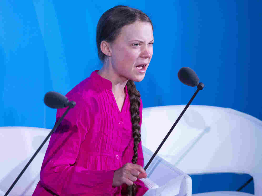 'How dare you': Greta Thunberg's tearful speech to leaders at UN