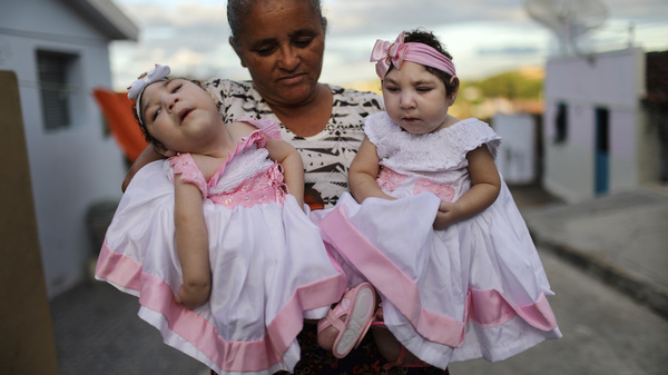 Grandmother Maria Jose holds her twin granddaughters Heloisa (right) and Heloa Barbosa, both born with microcephaly, during their one-year birthday party on April 16, 2017, in Areia, Paraiba state, Brazil.
