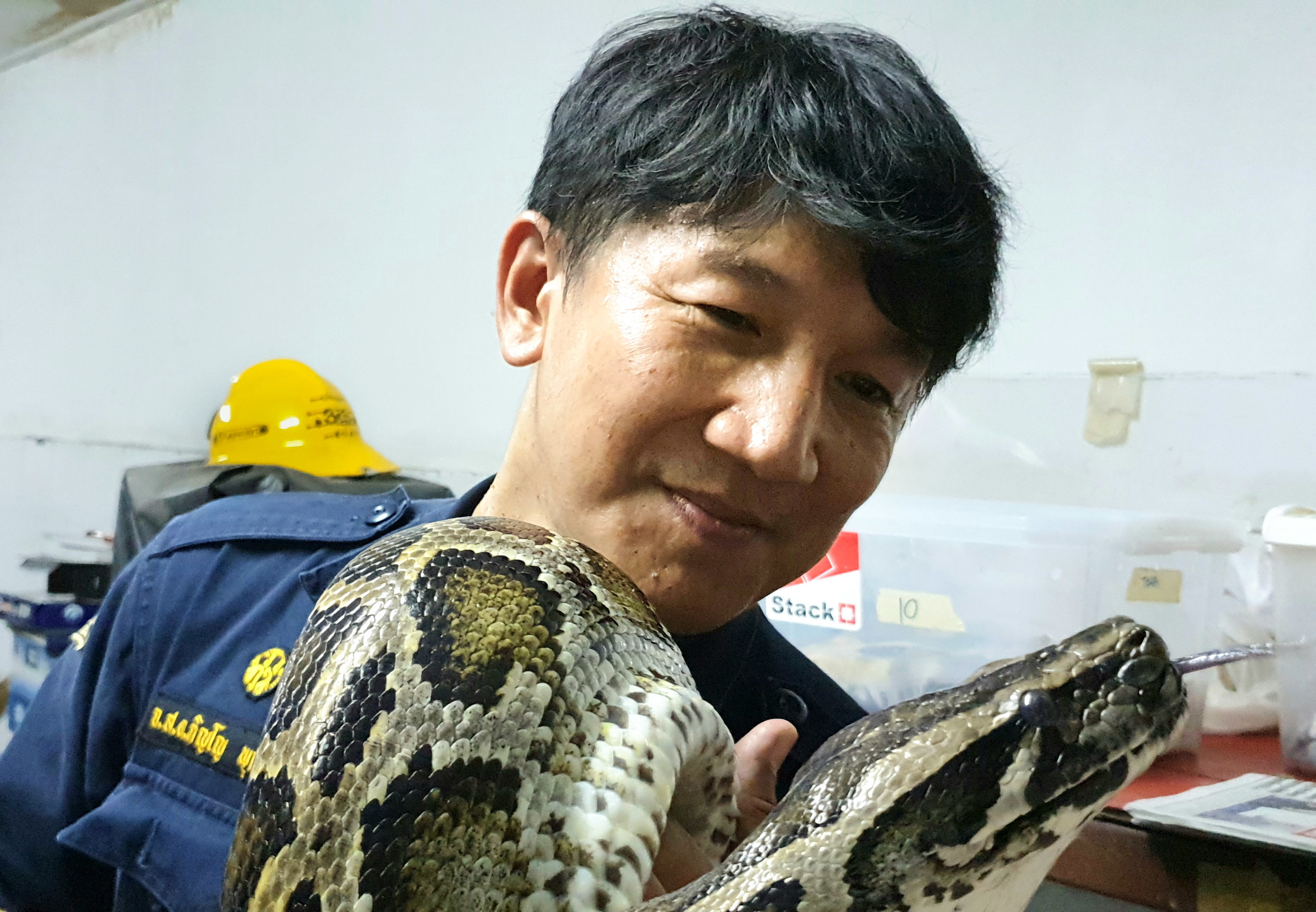 When Snakes Slither Into Bangkok Homes, This Is The Wrangler Who Gets Rid Of Them