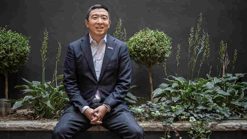 'A Game Changer': Andrew Yang Explains How He'd Give Every American $1,000 Per Month