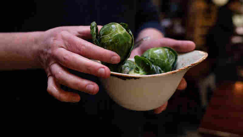 From Culinary Dud To Stud: How Dutch Plant Breeders Built Our Brussels Sprouts Boom