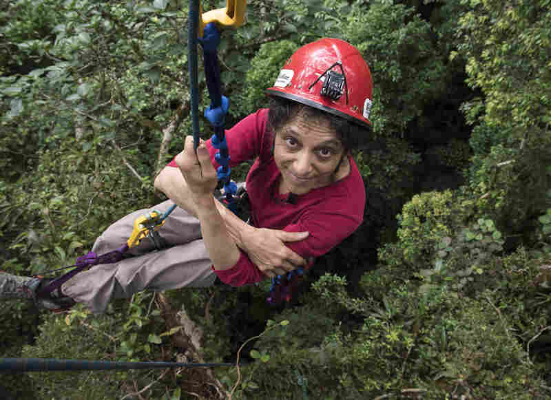 Nalini M. Nadkarni is a professor of biology at the University of Utah.