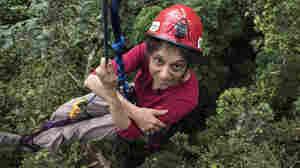 Not My Job: We Quiz Tree Canopy Expert Nalini Nadkarni On Canapés
