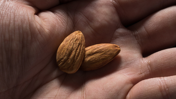 Consider the almond.