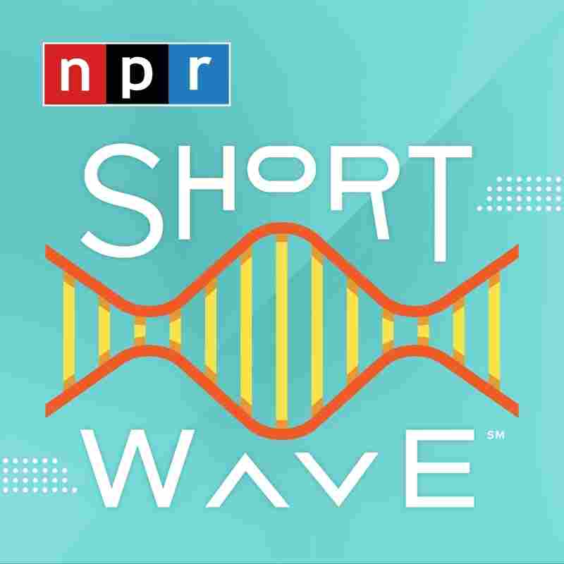Short Wave Logo