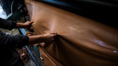 What's The Beef? The Declining American Leather Industry