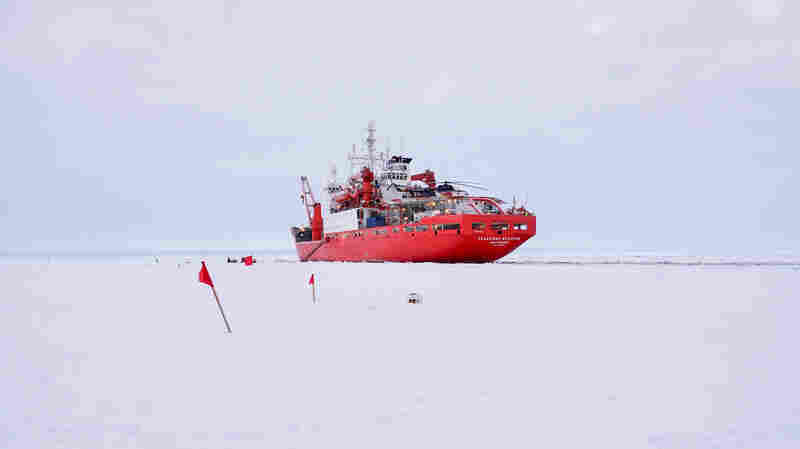 Studying The Ripple Effects Of Shrinking Arctic Sea Ice
