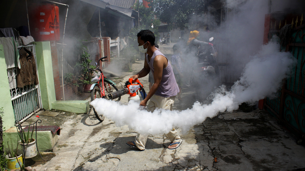 Residents of Wanasari village in Indonesia independently carry out fumigation in their neighborhood to eradicate the larvae of Aedes aegypti mosquitoes that cause Dengue Fever on February 11, 2019.