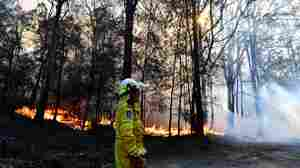 Wildfires Rage In Australian State: 'We've Simply Never Had This Number Of Fires'
