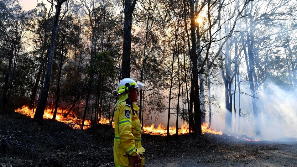 A firefighter monitors a fire on Saturday near Port Macquarie in New South Wales. Australia's most populous state has been subject to a large outbreak of wildfires because of drought conditions. (Saeed Khan/AFP via Getty Images)