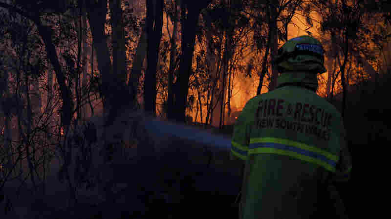 Australia Wildfires: State Of Emergency Declared Over 'Catastrophic' Danger