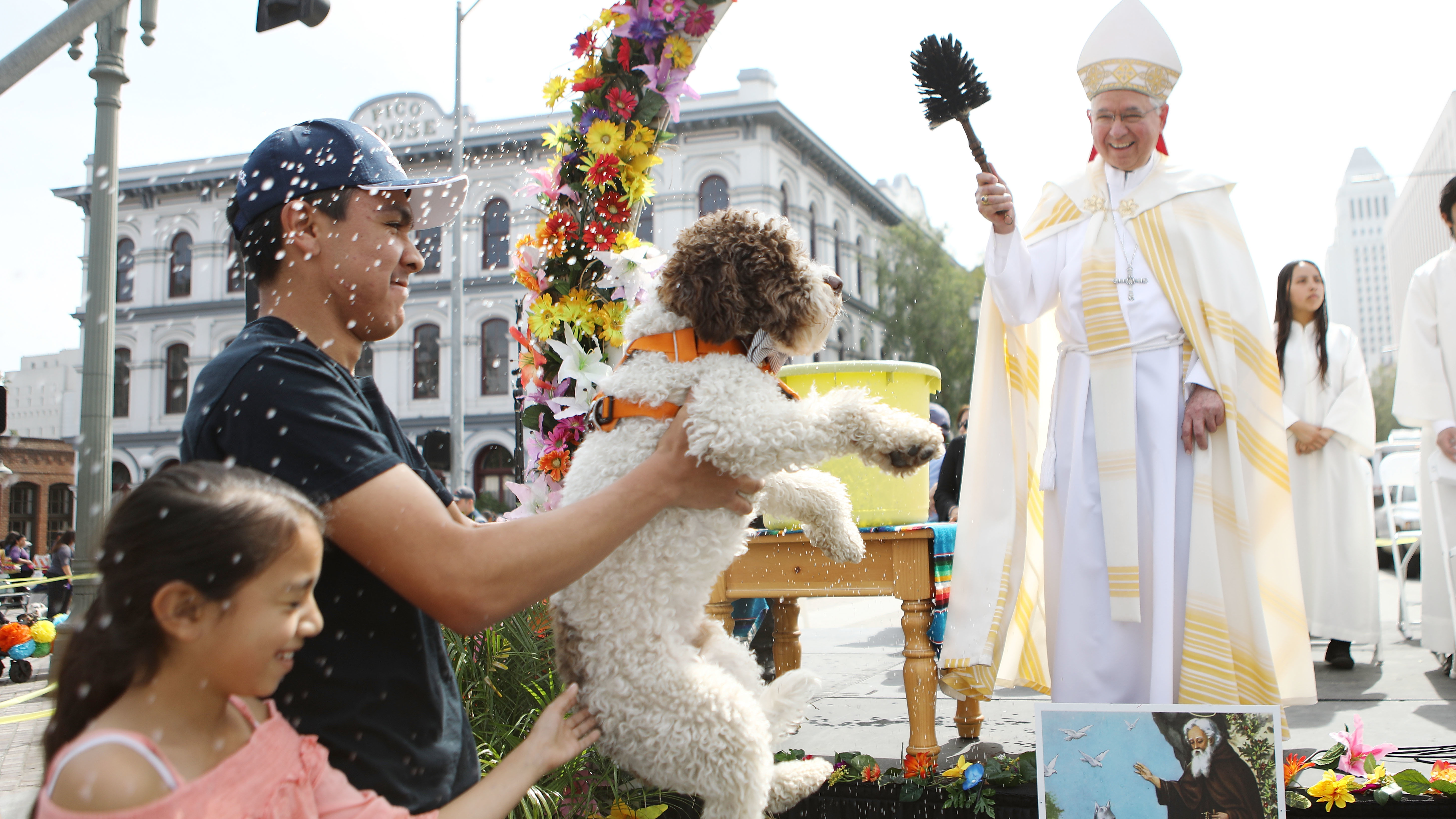 Archbishop José Gomez, 67, was elected to lead the U.S. Conference of Catholic Bishops Tuesday. He's seen here blessing a dog with holy water during the annual Blessing of the Animals ceremony in Los Angeles last year.