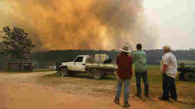 4 Dead As 'Tinder Box-Like Conditions' Fuel Catastrophic Bushfires In Australia