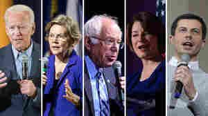 10 Democratic Candidates Qualify For Next Week's November Debate