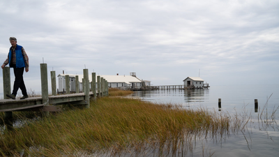 Rising Waters Are Swallowing A Chesapeake Education Center, Forcing It To Close