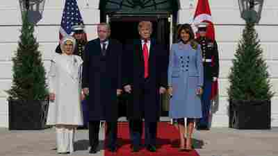 President Trump Hosts Turkey's Erdogan Despite Concerns In Congress