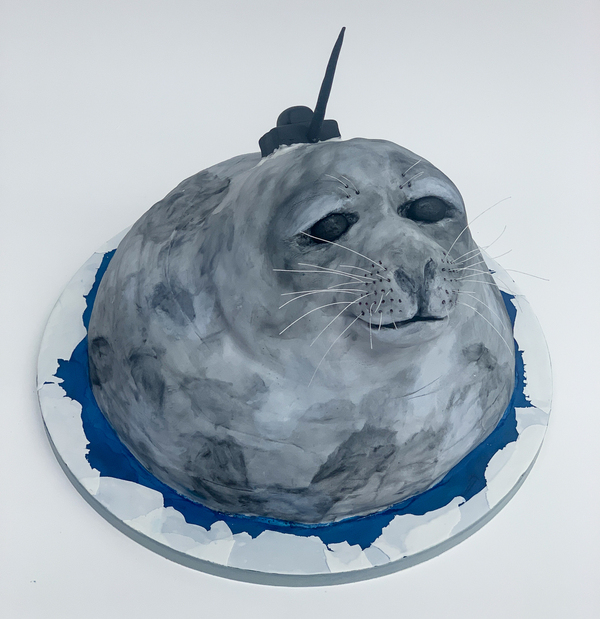 "No, the Weddell seal in this cake doesn't have a narwhal tusk. It's sporting a tracking device that transmits data about the salinity, temperature and water currents in the Southern Ocean. The devices are typically attached with epoxy, but ""this fondant tracking device was secured to its chocolate cake Weddell seal with royal icing,"" McAdoo says."