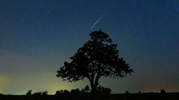 Part of the Perseid meteor shower, seen in Salgotarjan, Hungary, on Aug. 13. Two astronomers predict the Alpha Monocerotids showers will be a more intense showing.