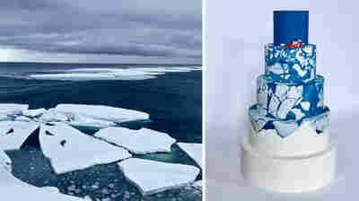 Antarctic Research Takes The Cake In These Science-Inspired Confections