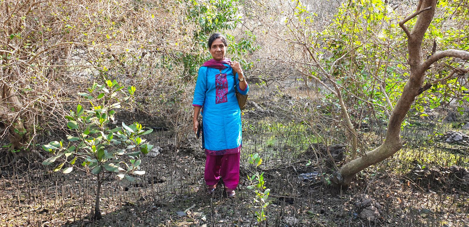 pathak-mangroves-B.N.Kumar