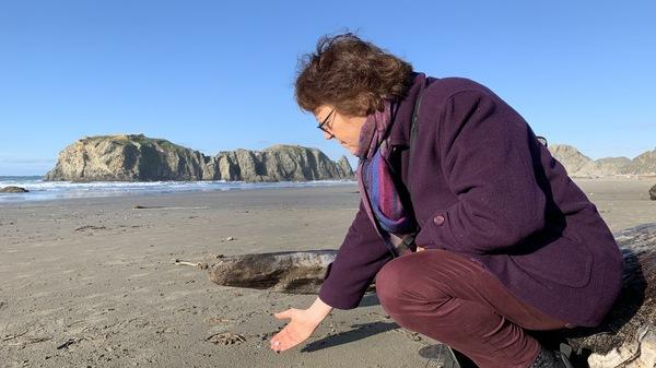 Angela Haseltine Pozzi founded Washed Ashore in 2010. The nonprofit turns plastics taken from Oregon