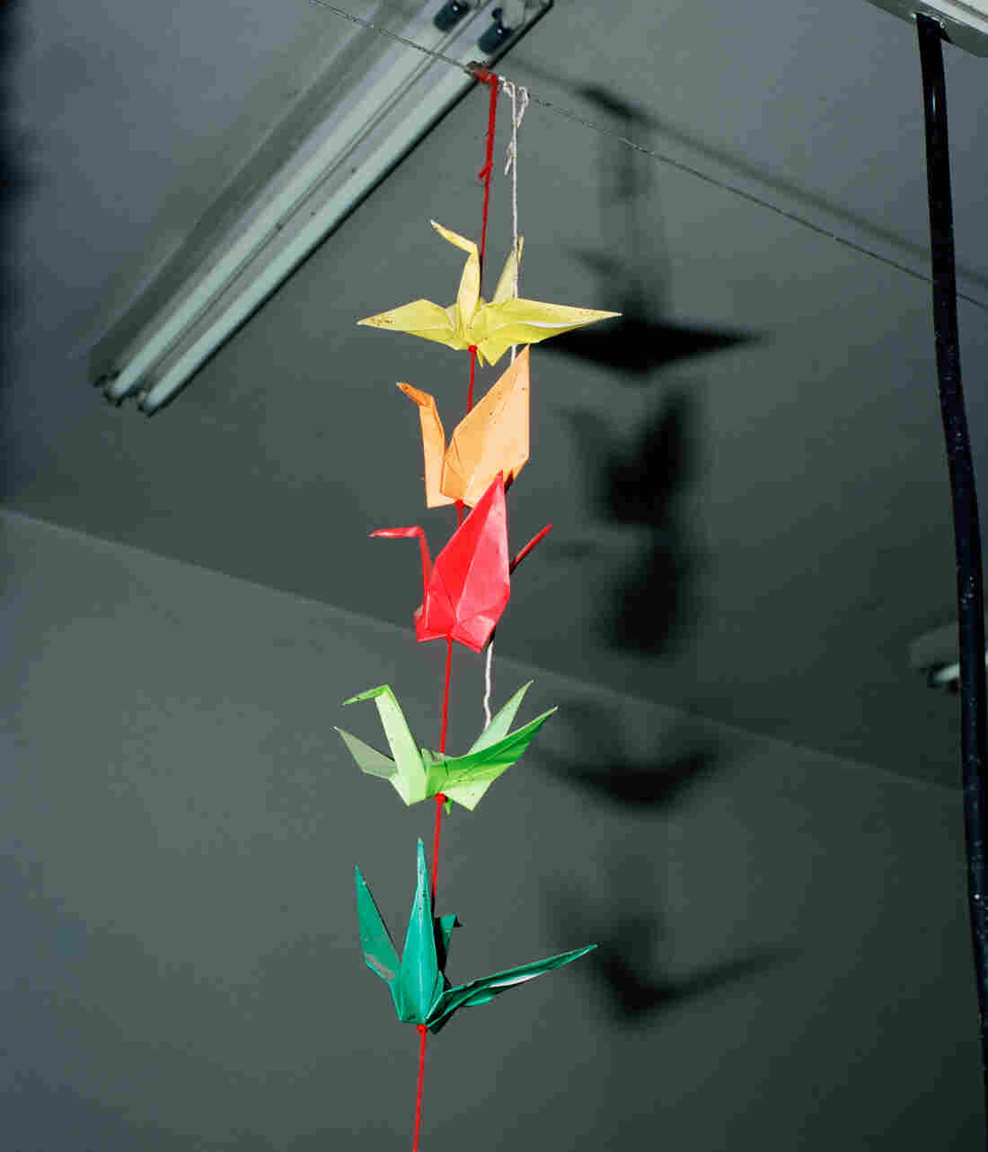 Colorful origami cranes are strung together and hang from the ceiling.