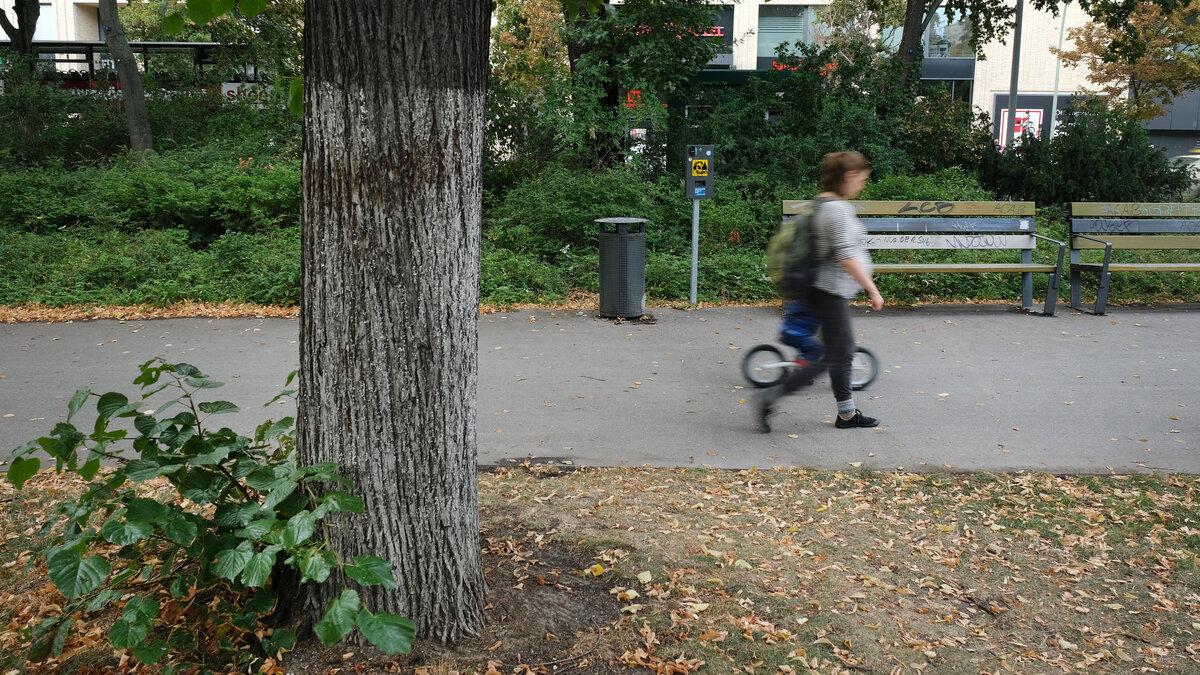 Berlin park where Russians murdered Georgian man