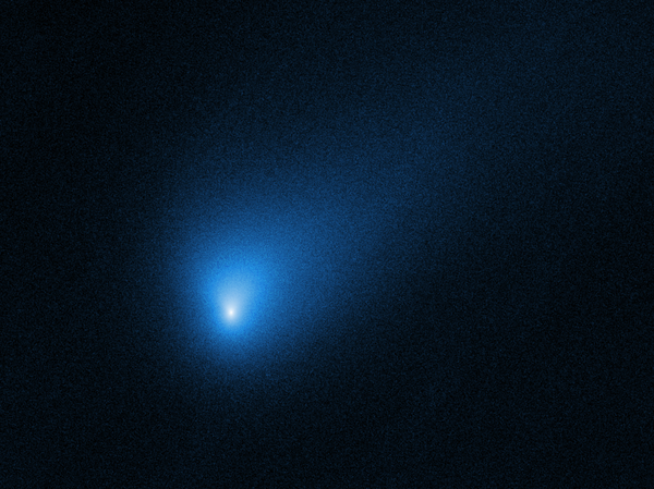The comet 2I/Borisov as imaged by the Hubble Space Telescope on October 12. Borisov will swing by the sun and then head back into deep space.