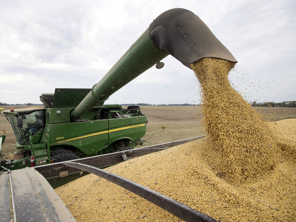 U.S. farmers have suffered a one-two punch of bad weather, which makes it hard to grow crops, and tariffs, which make it hard to sell what they grow.