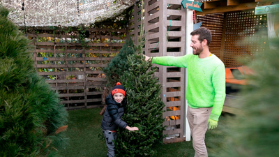 The Business Of Christmas Trees: How Millennials Might Be Their Saving Grace