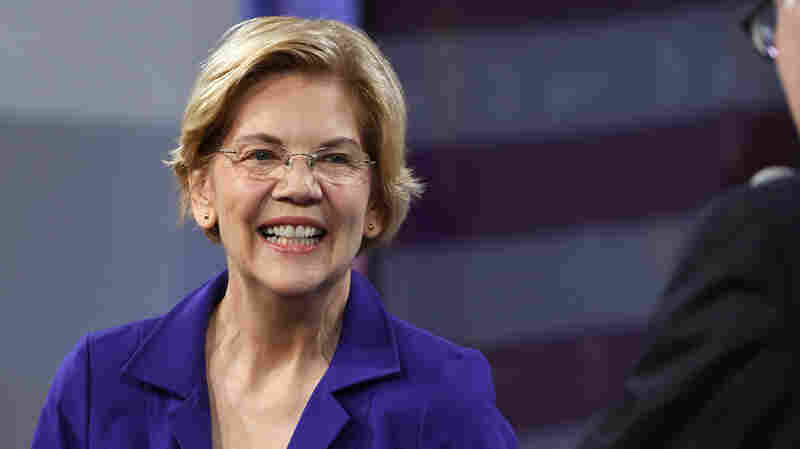 Grassroots Progressive Group Gives Warren Top Marks Among 2020 Democrats