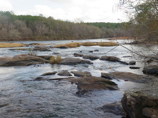 The Flint River starts near Atlanta and meanders south to the border with Florida, passing through pine forests and providing water for small towns and lots of farmland.