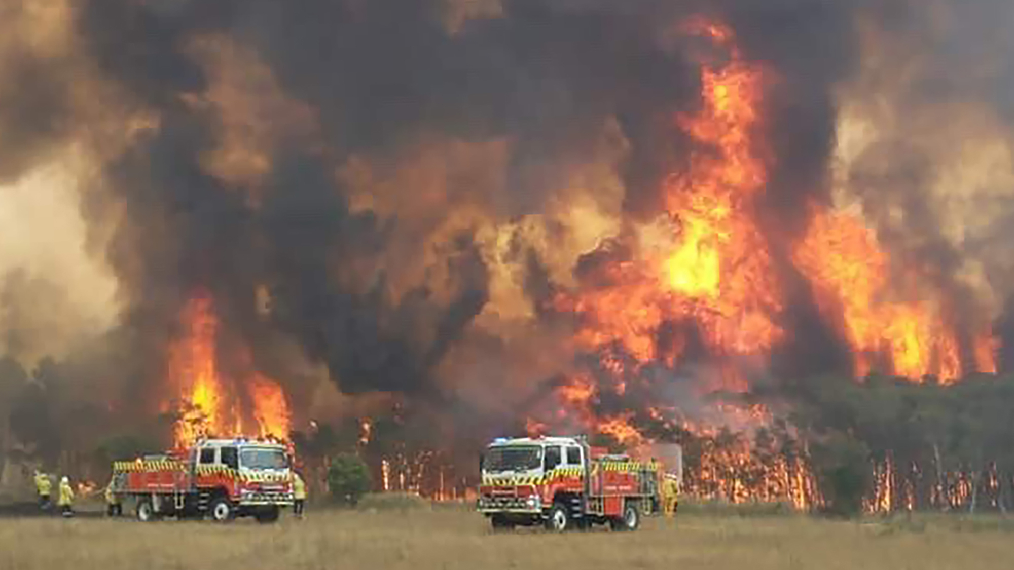 Image result for AUSTRALIA BUSHFIRES PEOPLE EVACUATE TO BEACH 2019
