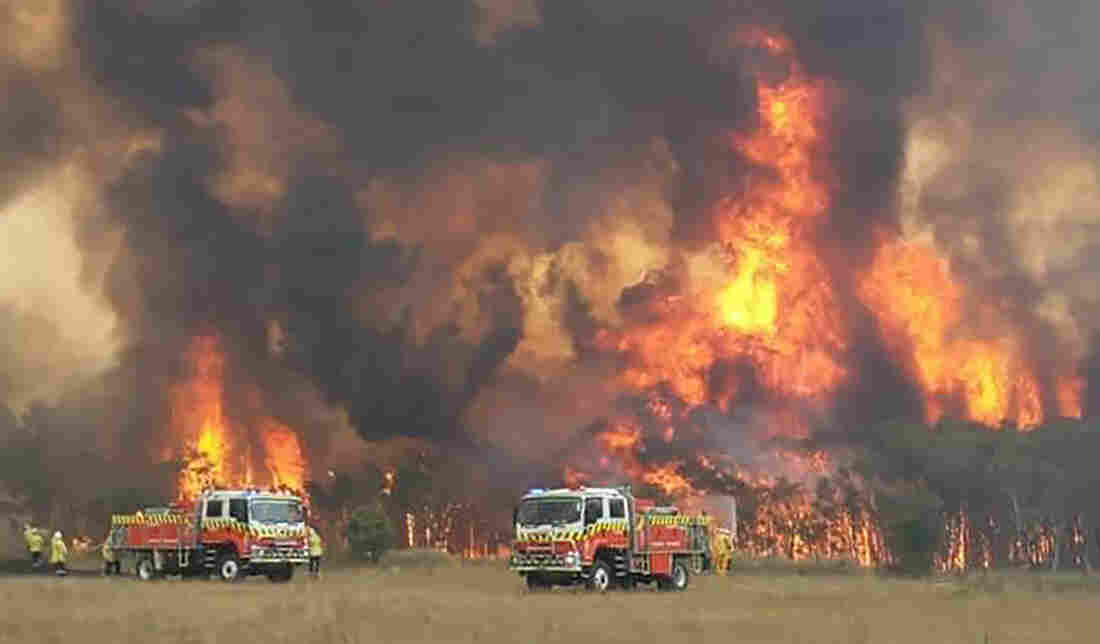 Westlake Legal Group ap_19365361950566_custom-13a08693d20fdc3ca2778fd77671505dd4544440-s1100-c15 In Australia Wildfires, Scenes Of Smoke, Sparks And Chaos