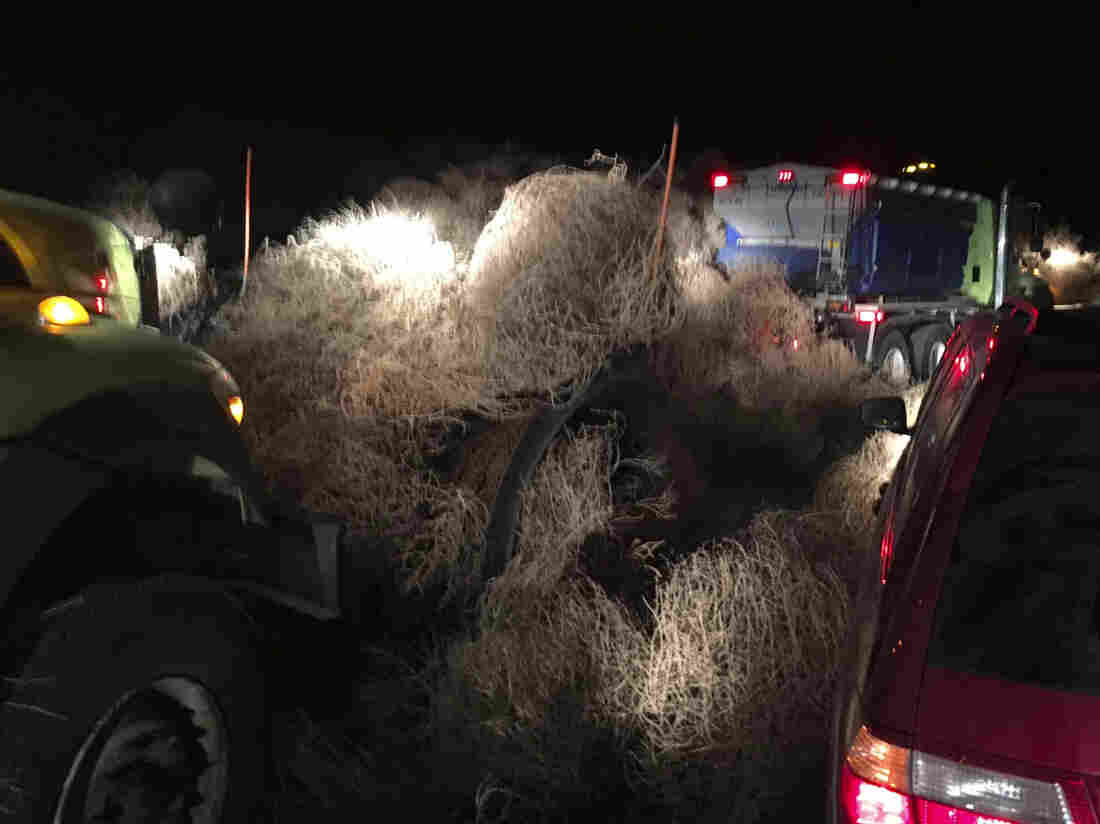 Wind-driven tumbleweeds piled on Richland highway trap 5 cars, truck