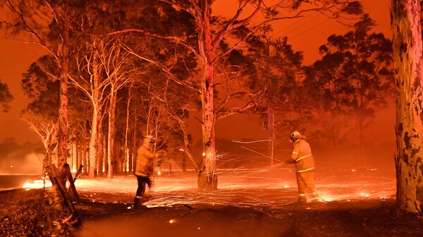 Firefighters battle a blaze engulfing trees in the town of Nowra in the Australian state of New South Wales on Dec. 31, 2019. Fire conditions worsened into the New Year, with thousands forced to evacuate.