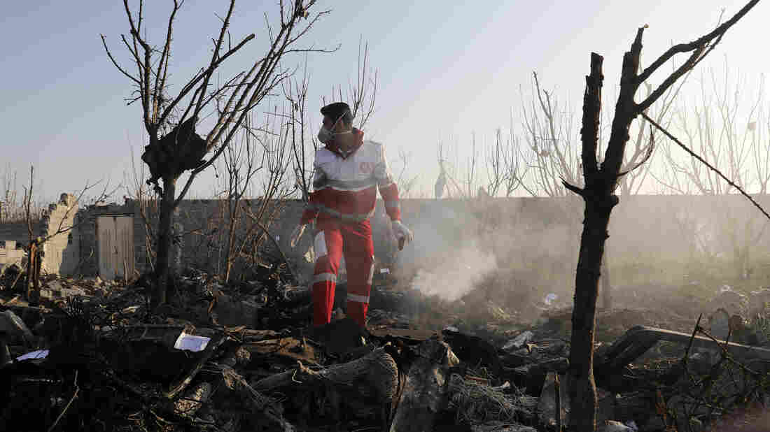 Iran's Downing of Ukrainian Jetliner an 'Awful Mistake', Says US official