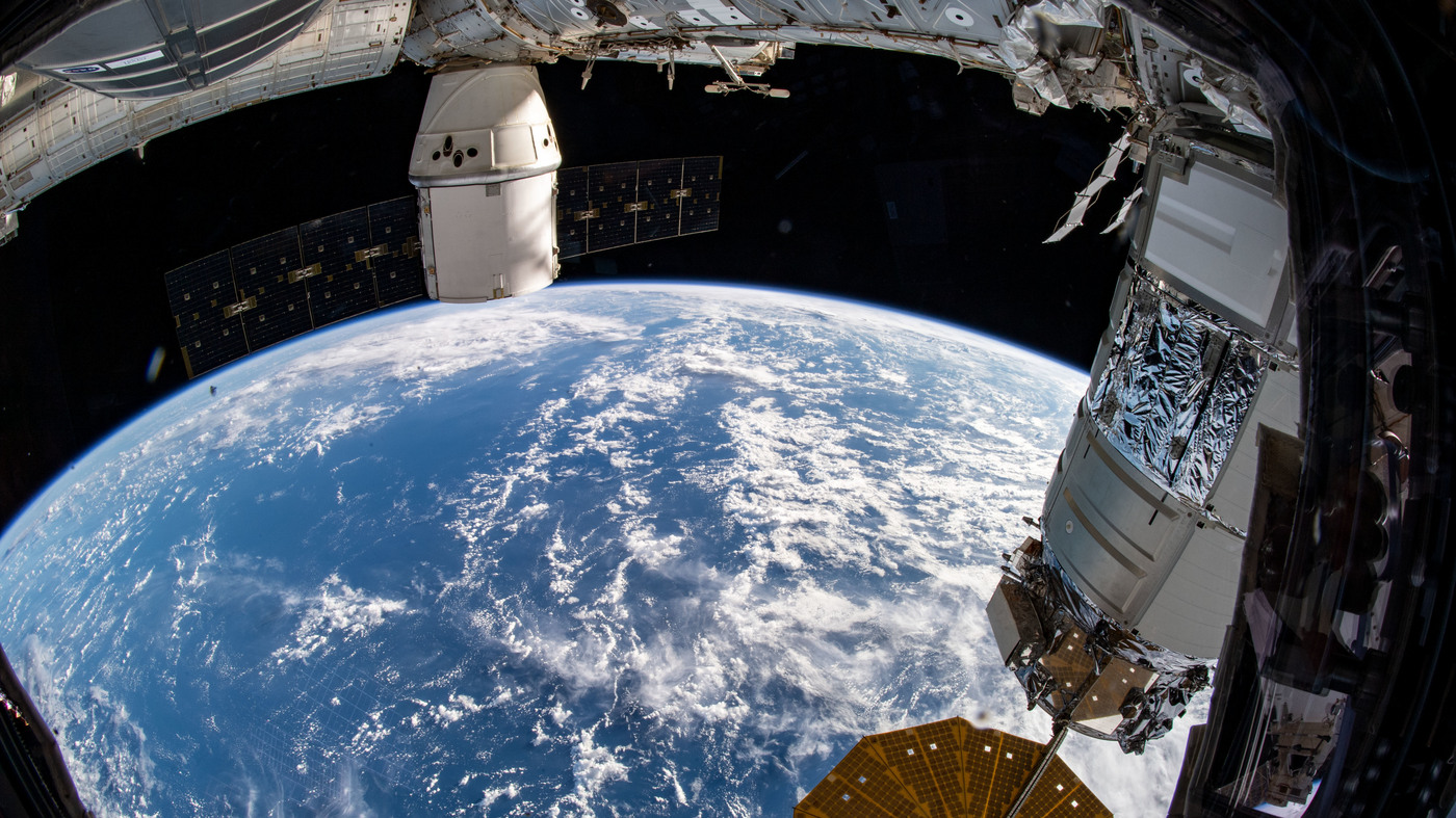 Scientists Sent Mighty Mice To Space To Improve Treatments Back On Earth