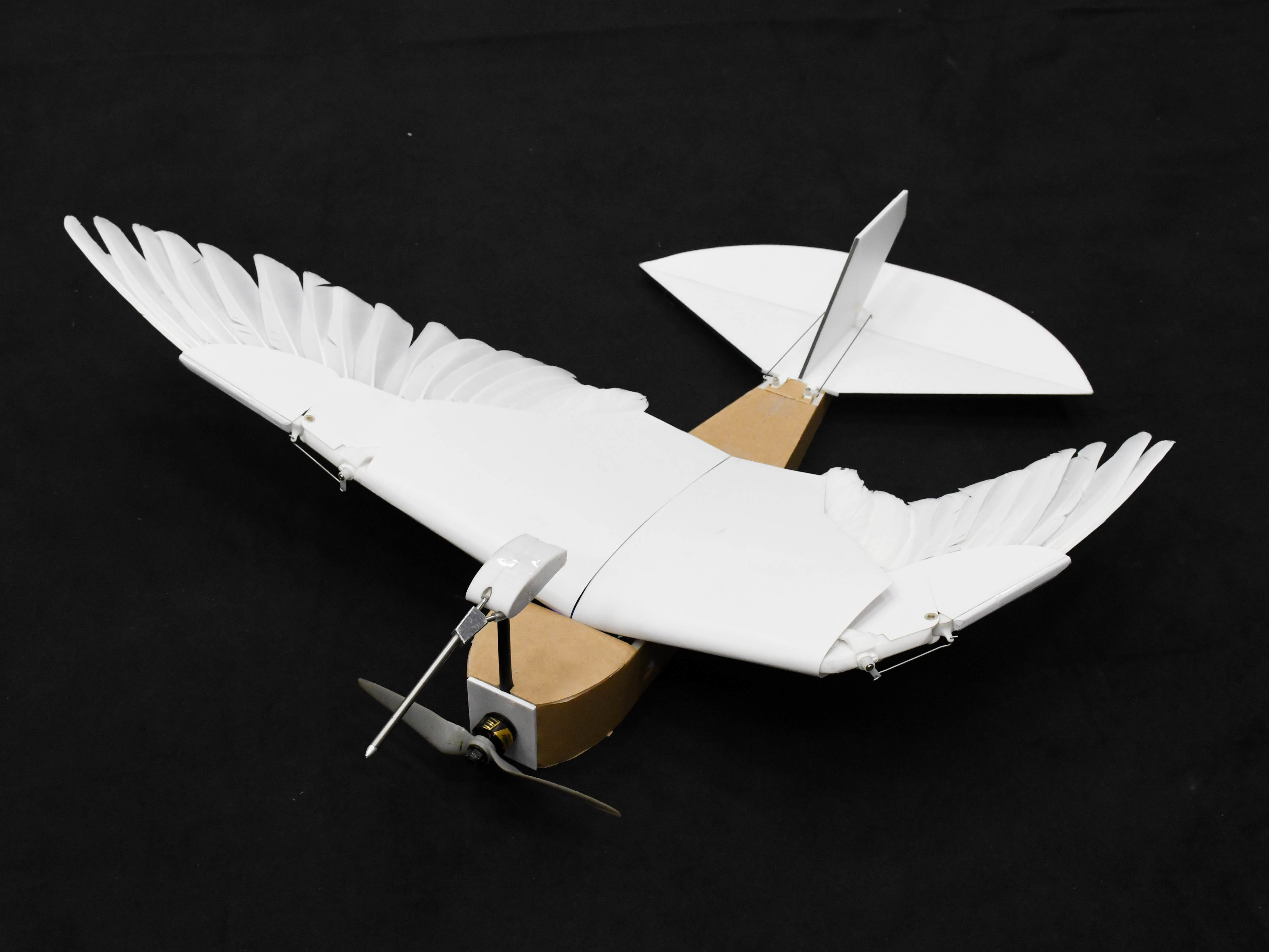 'PigeonBot' Brings Robots Closer To Birdlike Flight