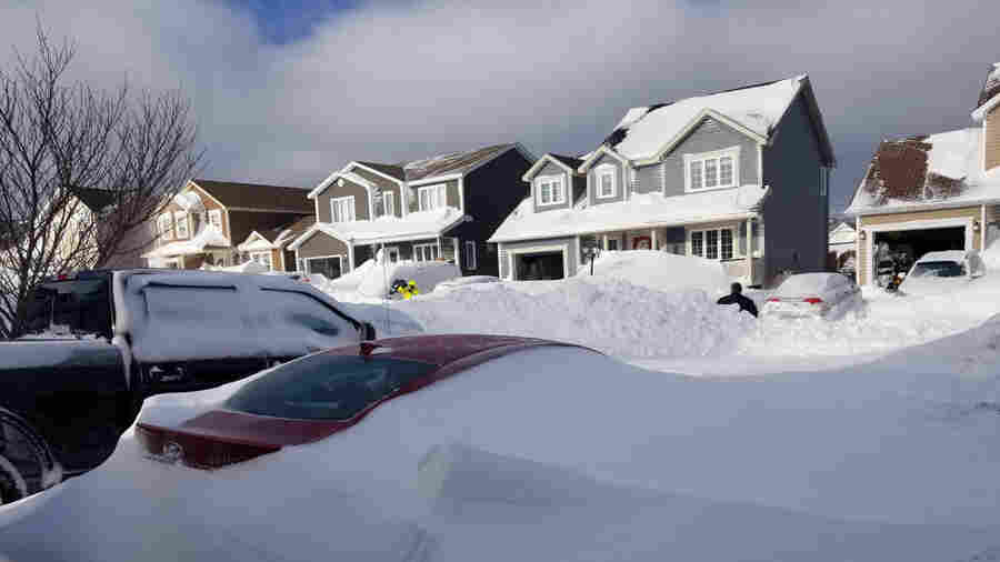 Canada Sends Armed Forces To Help Newfoundlanders Dig Out After Blizzard