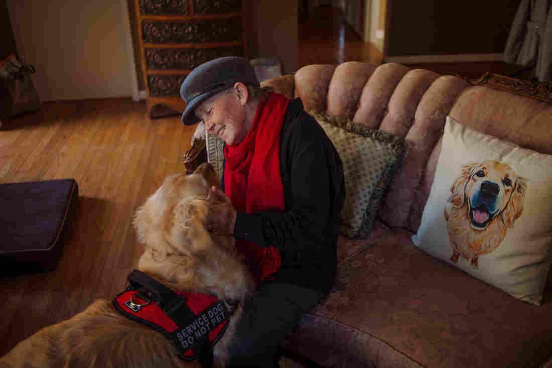 Westlake Legal Group diabetes-alert-dogs-1_custom-a06f4c0c33260cb1e80b4857ee427bced1a75b2c-s1100-c15 The Hope And Hype Of Diabetic Alert Dogs